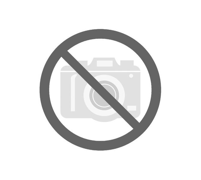 Tarcza polerska miękka, Ø 280 x 50 mm, Ø 35 mm  BERNARDO - 2528 - zdjęcie 1
